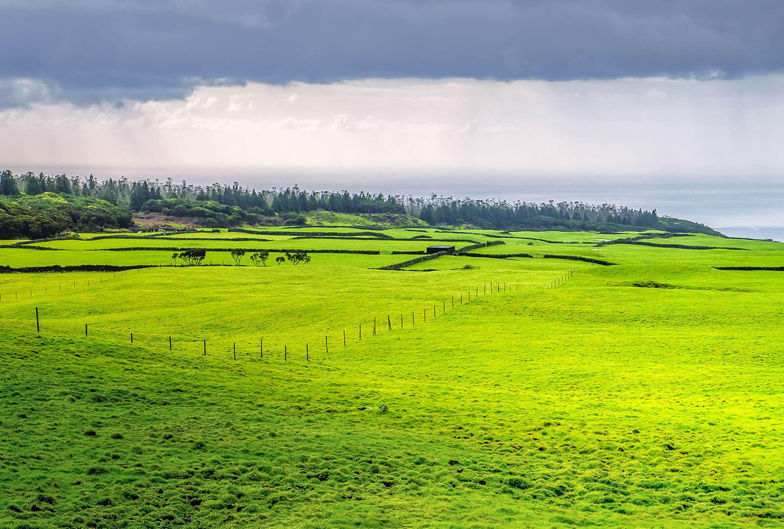 Passeio pela Terceira by Antero Ávila
