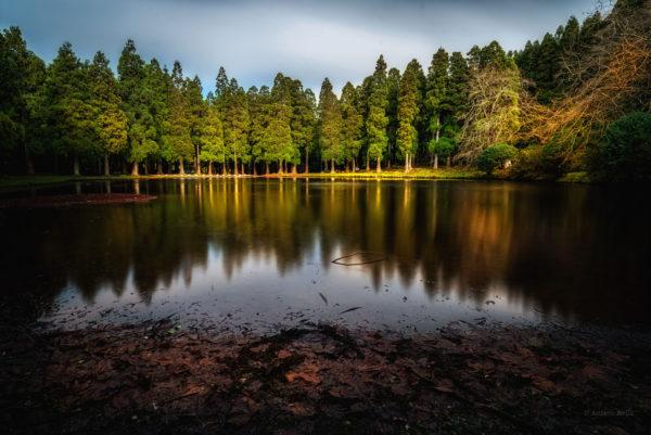 Lagoa das Patas I